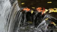 Autumn Waterfall Closeup Loop Stock Footage