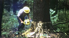 Man Logger Cutting Tree Down Chainsaw 1960s Vintage Film Archival Movie 1387 - stock footage