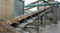 Sugar beet on conveyor Stock Footage