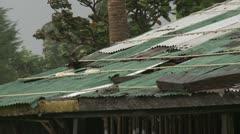 Hurricane Winds Peel Tin Shack Roof Stock Footage
