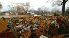 Fall leaves on ground during storm Stock Footage