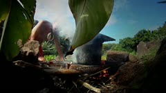 A Hawaiian native prepares tarot root. Stock Footage