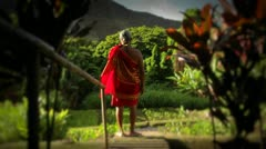 A native Hawaiian stands looking out at his land. Stock Footage