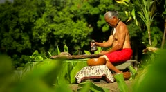 A Hawaiian native prepares tarot root with his hands. - stock footage