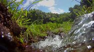 Pure fresh clean water pours from a waterfall. Stock Footage