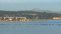 Pan of Bremerton navy yards Stock Footage