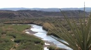 Stock Video Footage of River:Yucca1