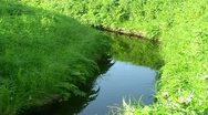 A small river Stock Footage