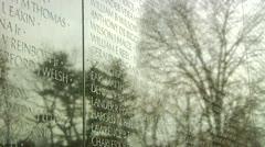 Vietnam Veterans Memorial (LP-Washington-109a) Stock Footage
