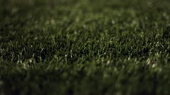 Turf Grass at Night Dolly Stock Footage