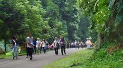 People Walking in Bogor Botanical Garden Stock Footage