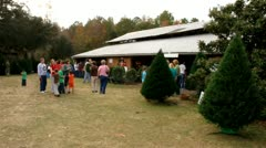 Shopping at Christmas tree farm Stock Footage