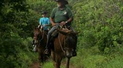 Ihmiset ratsastaa hevosilla pitkin kapeaa polkua Havaijilla. Arkistovideo