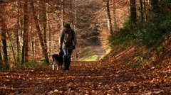 Walk the dog - stock footage