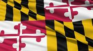 Waving Flag Of The US State of Maryland Stock Footage
