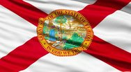 Stock Video Footage of Waving Flag Of The US State of Florida