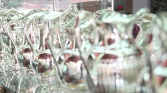 Jar made of Silver, fine Jewellery work Stock Footage