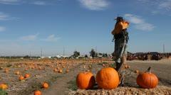 30 Sec Pumpkin Patch Train Ride.mp4 Stock Footage