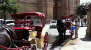 Stock Video Footage of Spanish Horse and Carriage