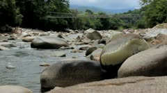 Jungle River with Suspension Bridge Stock Footage