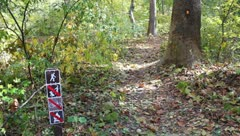 Entrance to a Leafy Path in the Woods With Signs Stock Video - stock footage