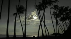 The sun or moon sets behind palm trees in time lapse. Stock Footage