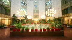 Winter garden under glass roof, many plants around Stock Footage