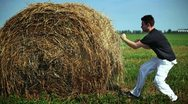 Stock Video Footage of Fighting with haystack