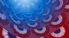 Patriotic Banners Stock Footage
