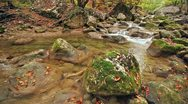 Stock Video Footage of The boulder which has acquired a moss, and the mountain river