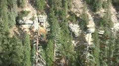 California Condor roosting in dead pine tree Stock Footage
