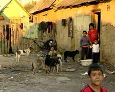 Gypsies Stock Footage