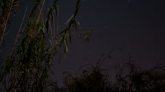 HD 30p v2 - The winter night sky in time lapse - facing southeast Stock Footage
