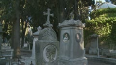 Portraits on cemetery tomb - glidecam Stock Footage