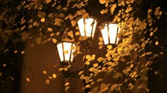 Yellow leaves and lights at night 1080 Stock Footage