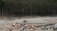 Japan Tsunami Aftermath-Driving Stock Footage