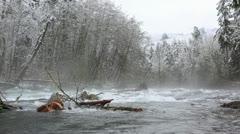 Winter river scene in British Columbia Stock Footage