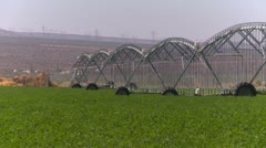 Agriculture, irrigated fields in the desert, zoom Stock Footage