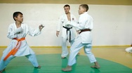 Martial arts sparring Stock Footage