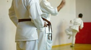 Stock Video Footage of Karate Students