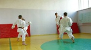 Martial arts instructor training  students Stock Footage