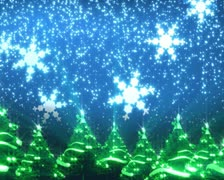 Christmas trees and snow Stock Footage