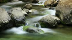 Creek Water (Stylized Time-Lapse) Stock Footage