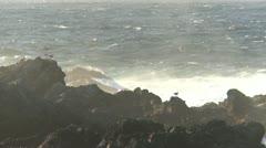 Amphitrite Point, waves crashing on rocky shore LS Stock Footage