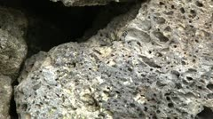 Lava Stone, close up. Stock Footage
