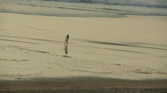 Little girl on the beach - stock footage