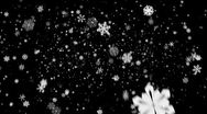 Stock Video Footage of Snow flakes falling over black background in HD