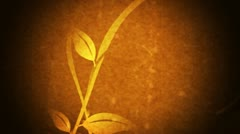 vines & leaves growing (grunge flourish) - stock footage