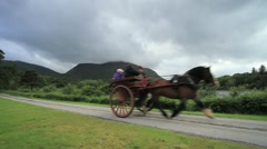 Muckross House Horse & Carriage, Ireland GFHD Stock Footage