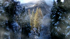 Snowy Winter Trees and Mountains with Misty Fog Stock Footage